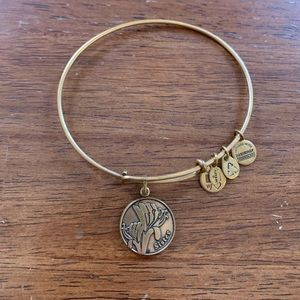 Alex and Ani Sister Bangle